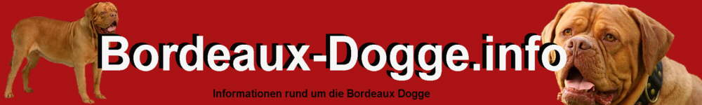 Bordeaux Dogge Hunde Informationen Rassebeschreibung Aussehen Charakter
